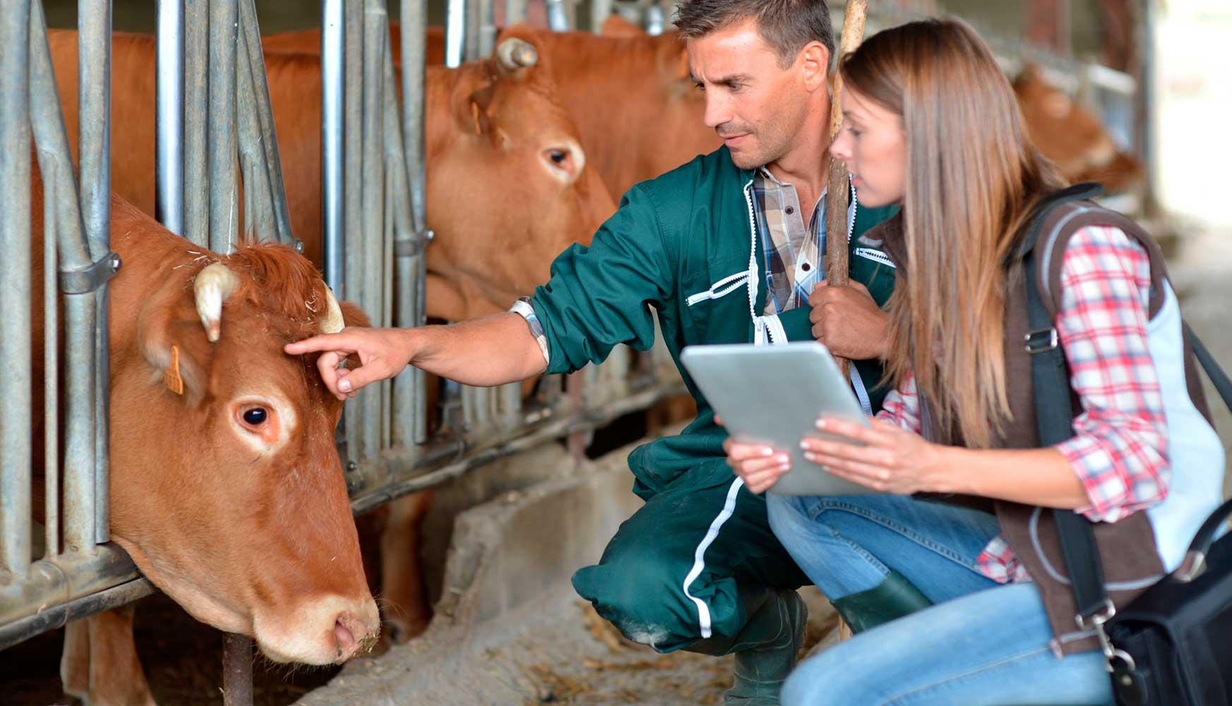 Epa-Escola-Profissional-Agricultura-Tecnologias_Curso_CEF_Tratador-Animais